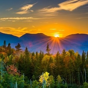 Beautiful forest sun rise scene in New Hampshire.